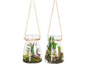 Künstliche Zimmerpflanze »Oswin« Sukkulente, DELAVITA, Höhe 16 cm, im Glasgefäß, 2er Set